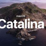 Mac Catalina アップデートでbashをzshにしろという警告を消す